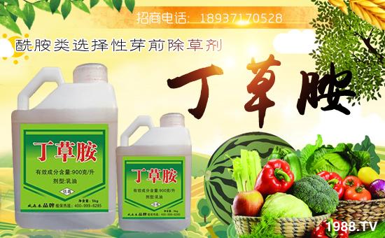 河南威森泰农业科技有限公司4