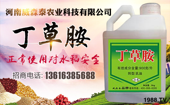 河南威森泰农业科技有限公司5