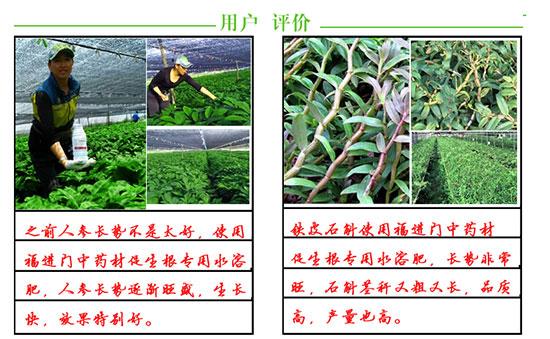 福进门中药材专用促生根水溶肥5