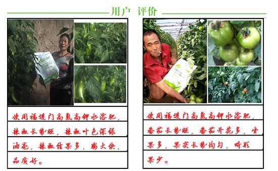 福进门高氮高钾型大量元素水溶肥4