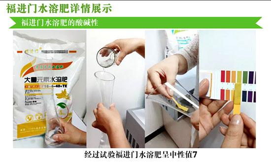 福进门香蕉专用水溶肥3