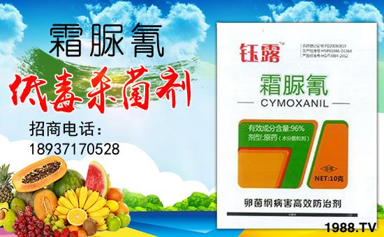 河南威森泰农业科技有限公司11