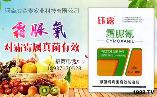 河南威森泰农业科技有限公司12