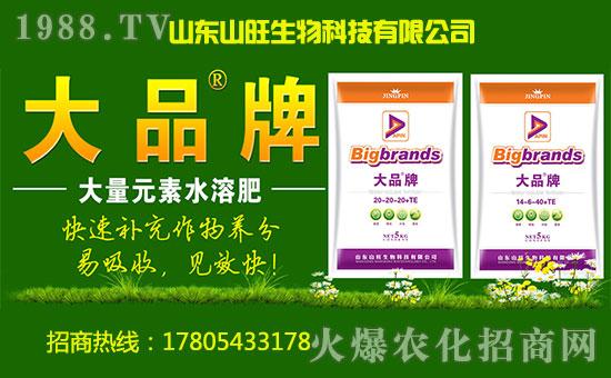 山东山旺生物科技有限公司2