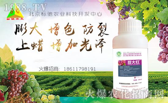 北京标驰农业科技开发中心