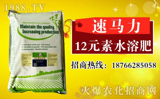 中澳西农新品――粉剂12元素水溶肥