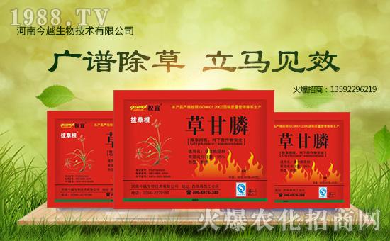河南今越生物技术有限公司