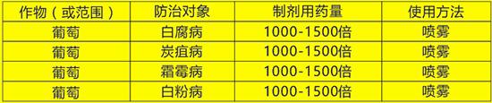 31.8%辛菌・吡唑醚菌酯-威廉・葡京-威廉康农2