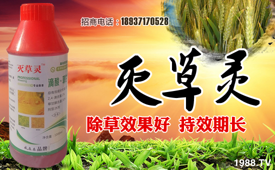 河南威森泰农业科技有限公司13