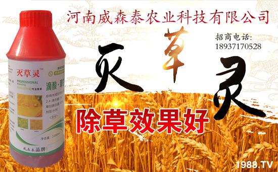 河南威森泰农业科技有限公司14