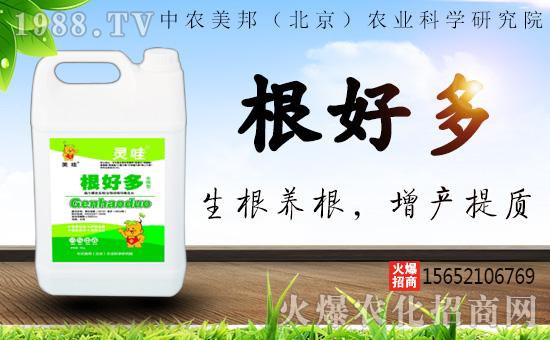 中农美邦(北京)农业科学研究院