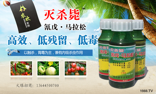 【哈尔滨农欢农】祝全国朋友开年大吉,万事如意!