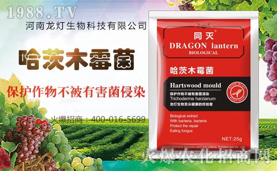 河南龙灯生物科技有限公司