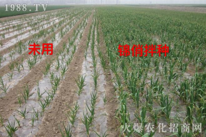 上海铭越农业科技有限公司