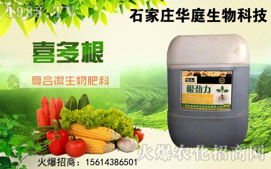 冬季作物要高产,要好根系才是重中之重!