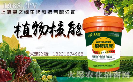 【上海星之缘】祝大家在新的一年里身体健康,万事如意!