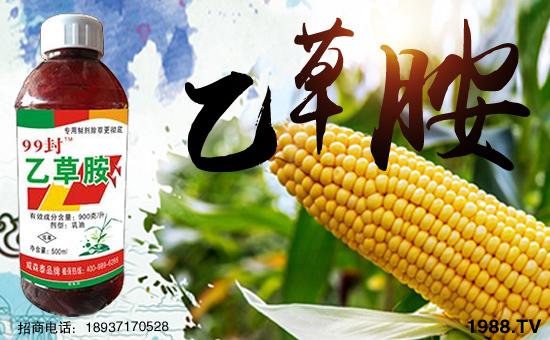 河南威森泰农业科技有限公司20
