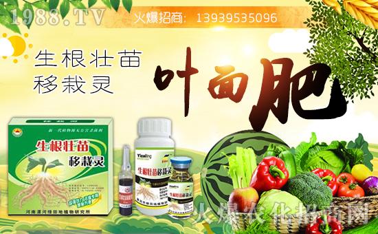 【绿田地植物】祝大家在新的一年里身体健康,万事如意!