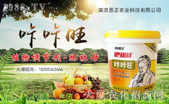 转眼迎来农历年,天增岁月人平安!值此新春佳节来临之际,南京恩正农业科技有限公司祝大家在新的一年里身体健康,万事如意!