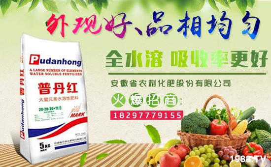 安徽省农利化肥股份有限公司
