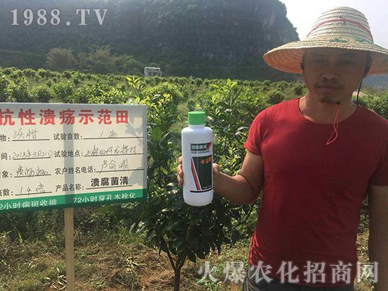 溃腐菌清-美盛农业