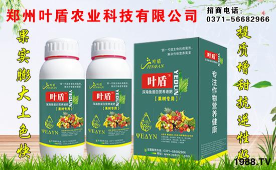 郑州叶盾农业科技有限公司5