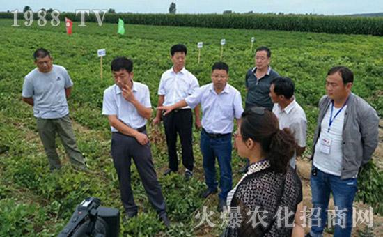 郑州东兴农业科技有限公司1