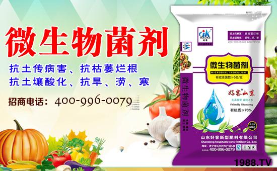 腐植酸在农业种植方面主要作用和意义