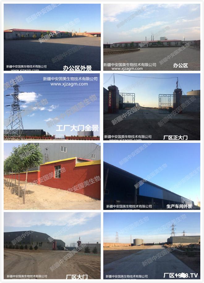 新疆中安国美生物技术有限公司