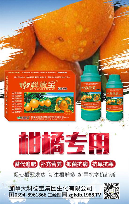 柑橘的甜度�c那些因素有�P?如何提高柑橘的甜度�c�值?
