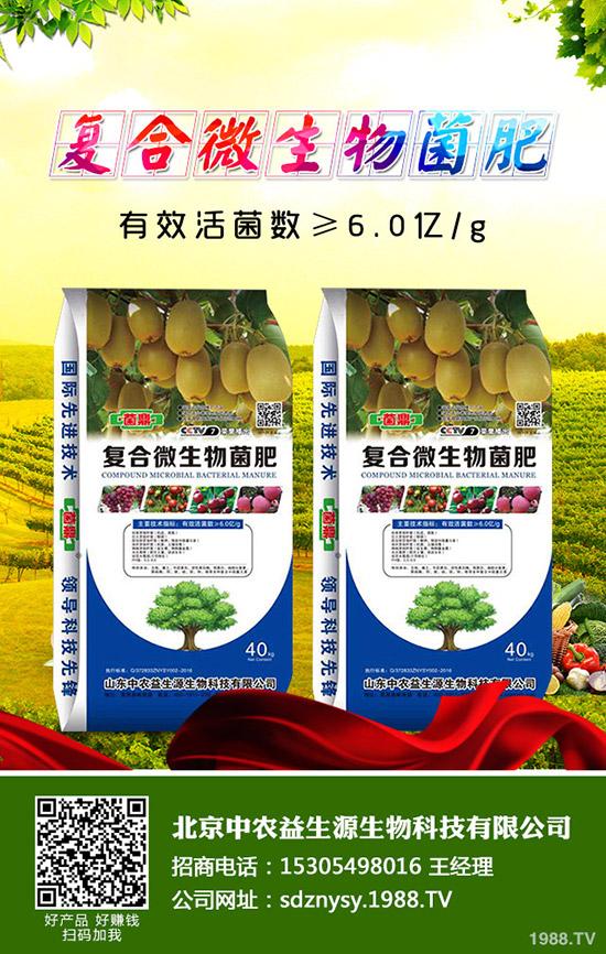 【价格早报】2019-11-1今日最新磷酸一铵成交价格及行情动态!