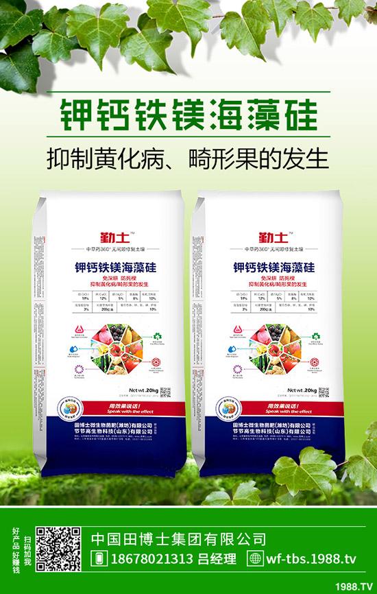 2019年11月8日最新钾肥行情走势预测,氯化钾出厂报价一览