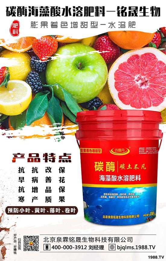 施用有机肥,水果品质高!