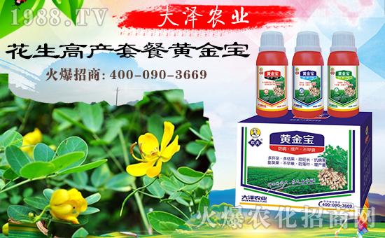 合作共谋发展,河南大泽农业再次签约1988.TV