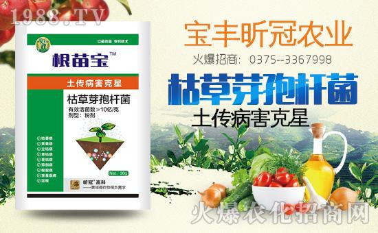 蔬菜土传病害如何有效防治?土传病害特效药有哪些?