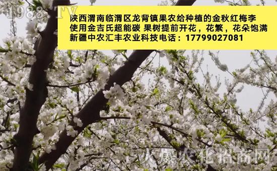 新疆中农汇丰农业科技有限公司