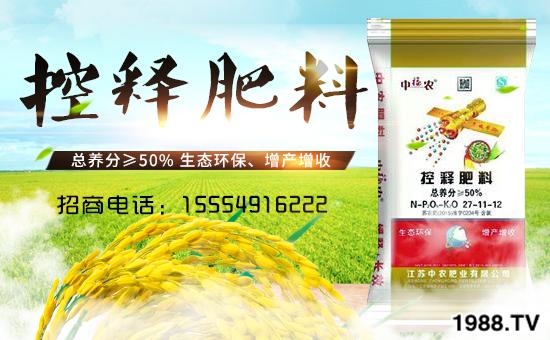 水稻施肥需要注意什么?水稻施肥时间及施肥技术