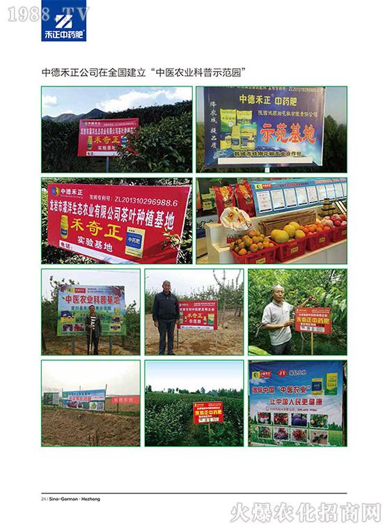 桂林新桔园农业发展有限公司 (13)
