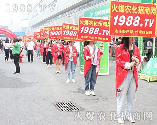 2019安徽农业博览会上亮点突显,1988.TV成焦点!