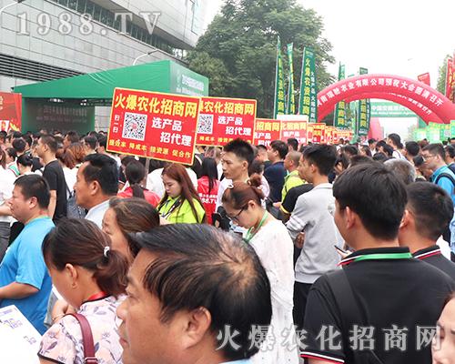 2019第8届安徽农博会,火爆农化网的宣传无处不在