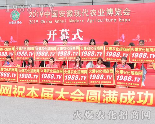 汇集火爆力量,唱响2019安徽农业博览会