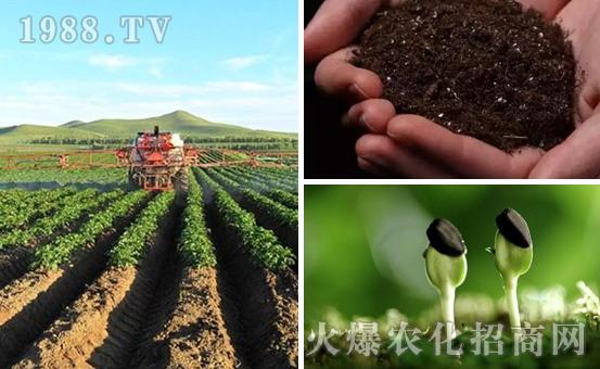 土壤板结对作物有哪些影响?如何解决?解决土壤板结的办法