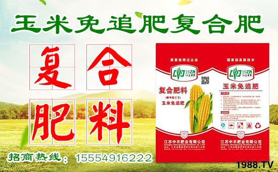 玉米怎么施肥效果好?玉米高产施肥技巧