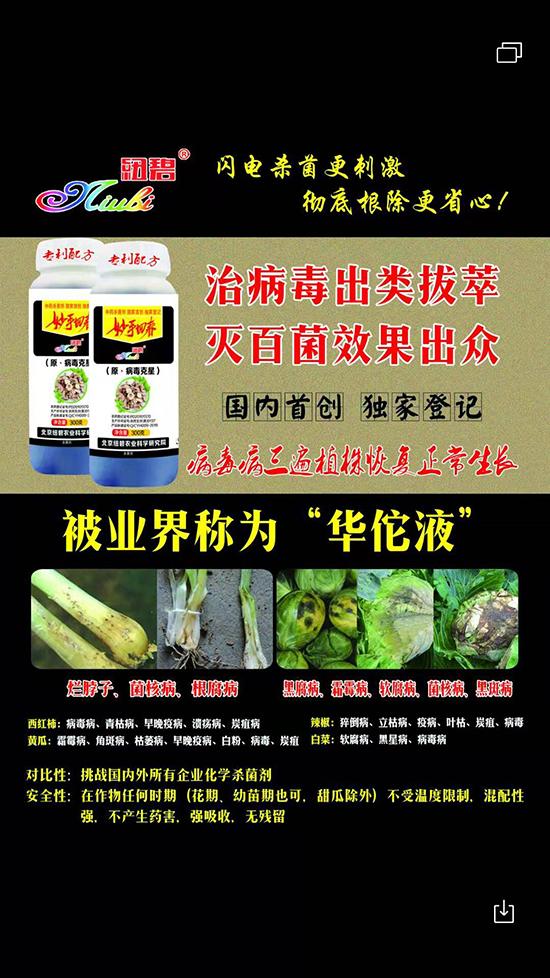 蔬菜专用-原・病毒克星-妙手回春