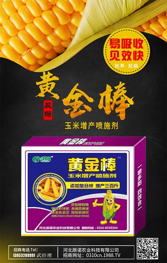 玉米为什么会空杆?玉米空杆病原因分析与防治技巧了解么?