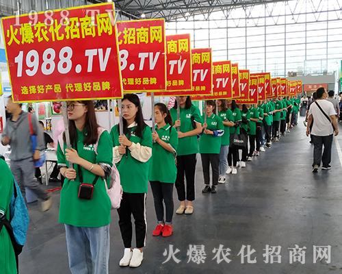 1988.TV的宣传队伍在2019第16届昆明农资会上成为焦点