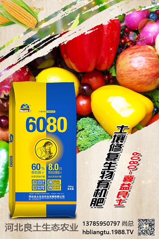生物有机肥好处多多,你真的会用吗?生物有机肥的使用方法详解!