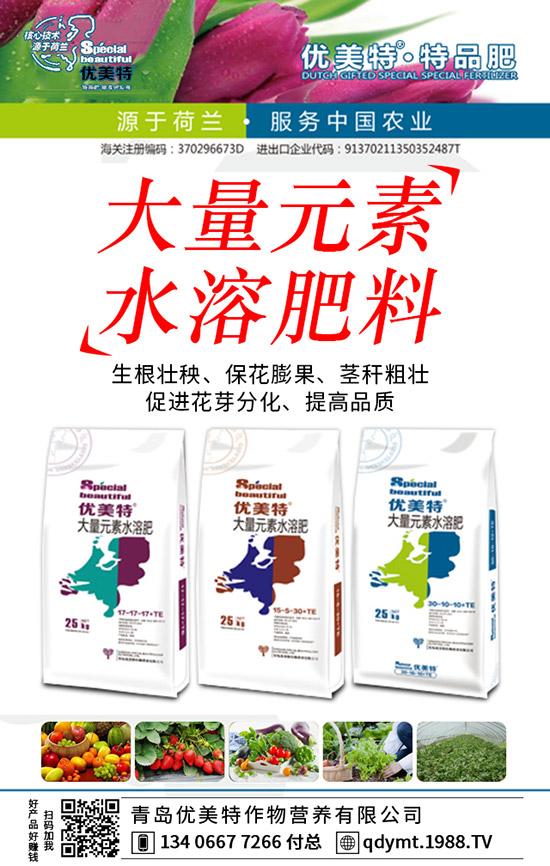 均衡性、高氮型、高磷型、高钾型大量元素水溶肥区别!怎样选用及使用!