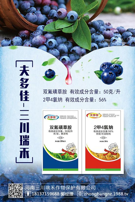 杭锦旗农药市场检查,维护农药市场经营秩序