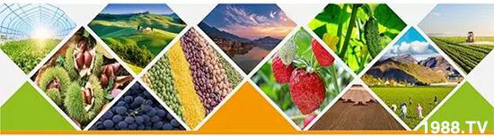 """""""化肥零增长""""高压下,新型肥料迅速崛起,作物科学增长空间巨大!"""